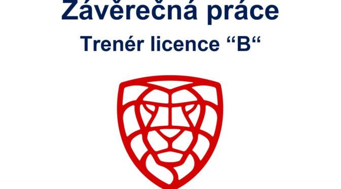 Florbal: Závěrečná práce – Trenér licence B – 5. Závěr